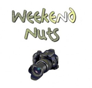 weekend nuts photography bangalore